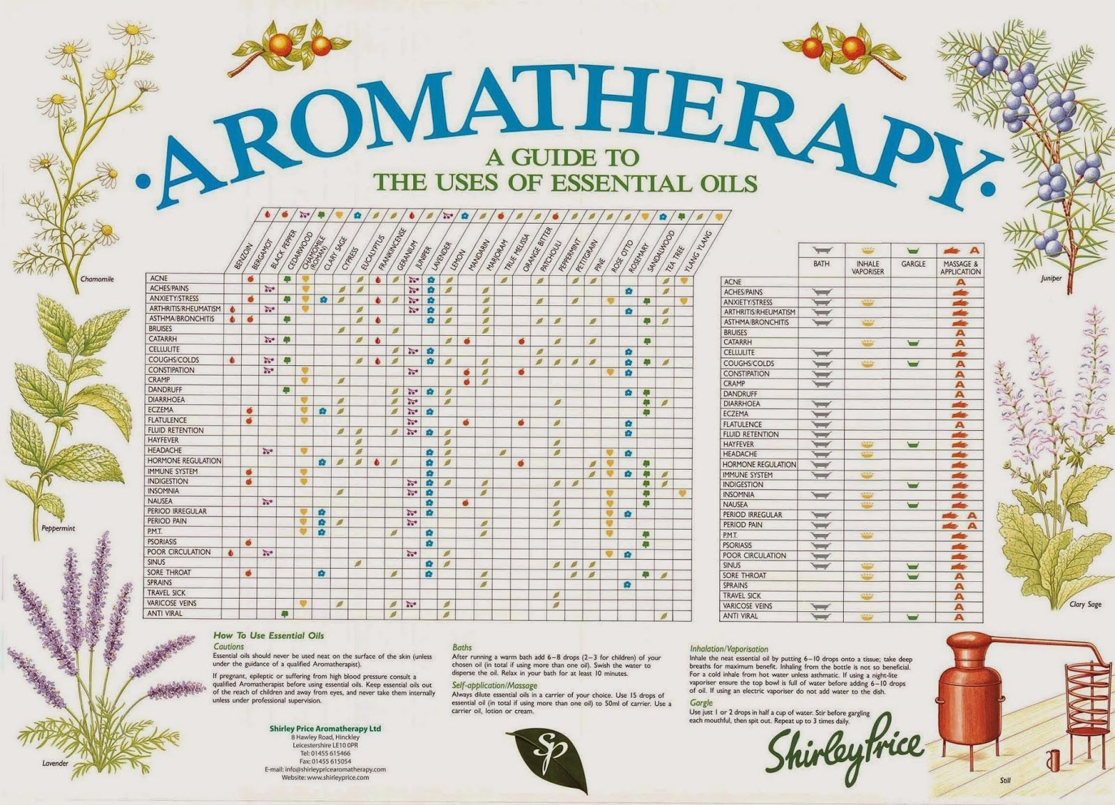 Shirley Price Aromatherapy Reference Chart  -A4